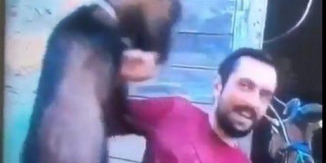 """(ФОТО) Хит на денот: Репортерот на Сител, Димитар Бабалков, среде програма во живо беше """"нападнат"""" од прч!"""