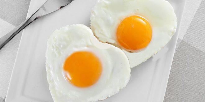 Белките можат да бидат подеднакво добри, како и целите јајца, за зголемување на мускулната маса